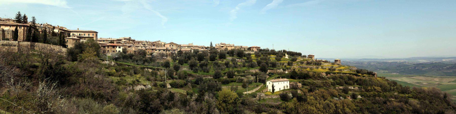 Frühling in der Toskana, Montalcino, Italien, Christian von Stosch